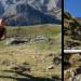 Entrevista a Cuchi Ballenilla, fisioterapeuta y ultra runner